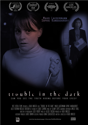Trouble in the Dark
